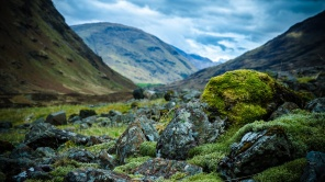 scottish_highlands_wallpaper_by_feliskachu-d5sxkx1
